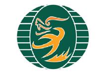 Long Việt Logo